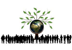 Instituto para la Diversificación y Ahorro de la Energía IDAE