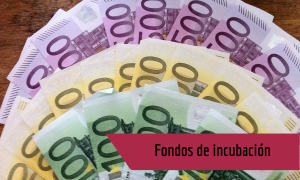 ICO lanza fondos de incubación para pymes