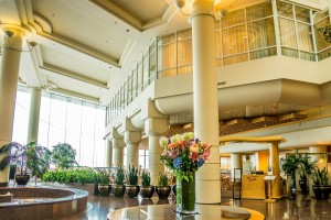 Ayudas instalación de redes en Hoteles