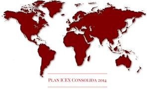 Plan ICEX Consolida 2014